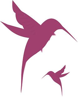 hummingbirds-312333_640
